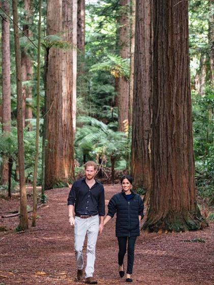 Prins Harry and Meghan Markle in Rotorua Redwoods Sequoia